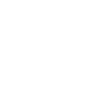 LVMH - Moet Hennessy Louis Vuitton